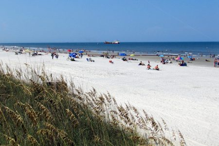 Free Things To Do in Jax